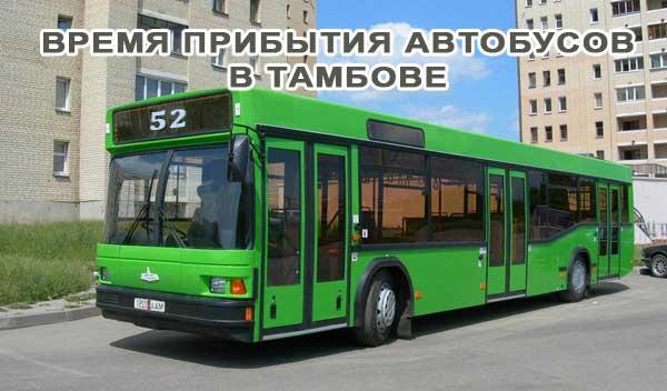 -gorodskoj-avtobus-tambov